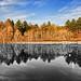 Small photo of Alternative Reflections