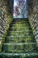 green stairs (hdr)