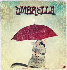 U is for Umbrella.
