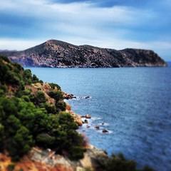 Punta Falconera 2 #roses #igersgirona #igerscatalunya #emporda #costabrava