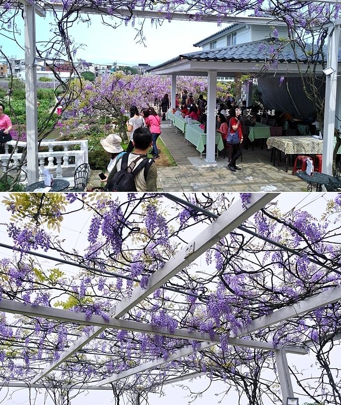 1 紫藤咖啡園 2014