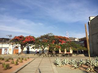 Santo Domingo @ Oaxaca 04.2014