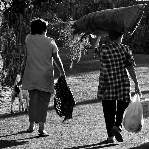Rural work