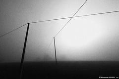 Nowhere lines | Lignes de nulle part