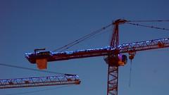 DC Dance of the Cranes 59113