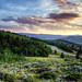 Hiking in Granby, CO by neil_berget