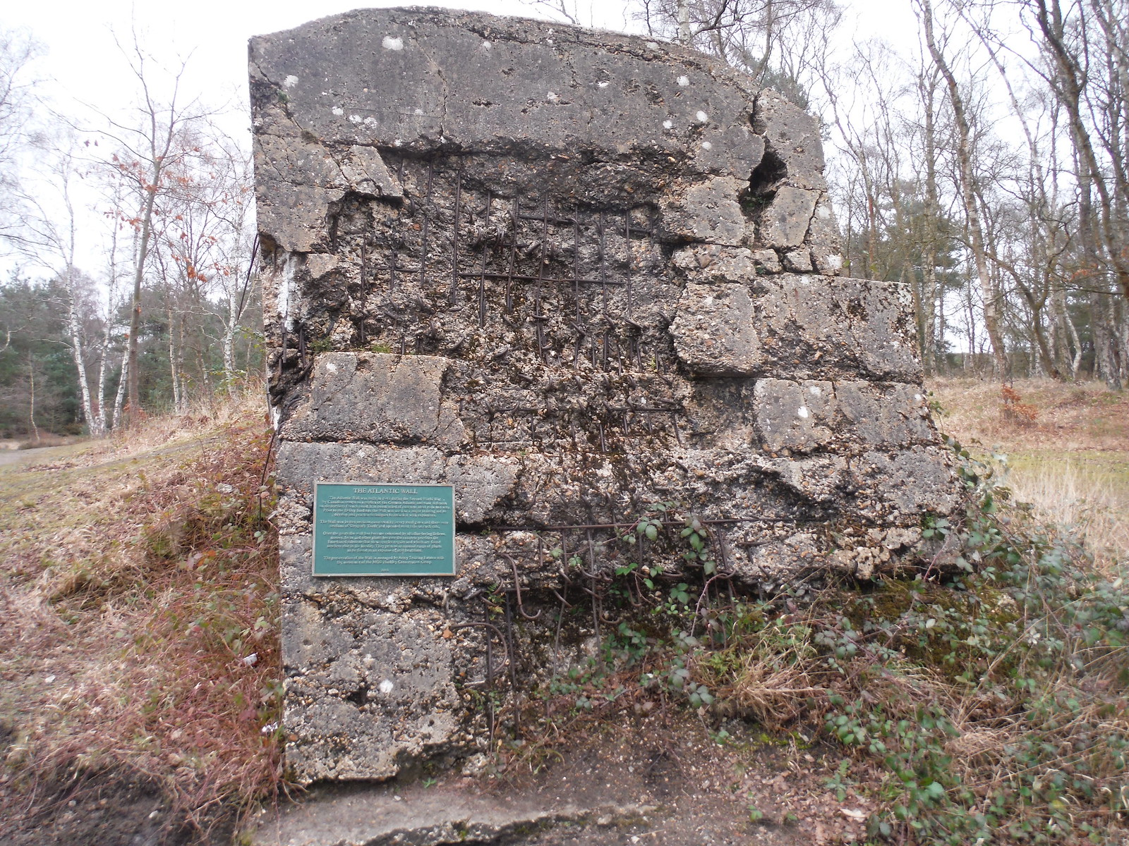 Breach in The Atlantic Wall, Hankley Common SWC Walk 144 Haslemere to Farnham - Atlantic Wall Extension