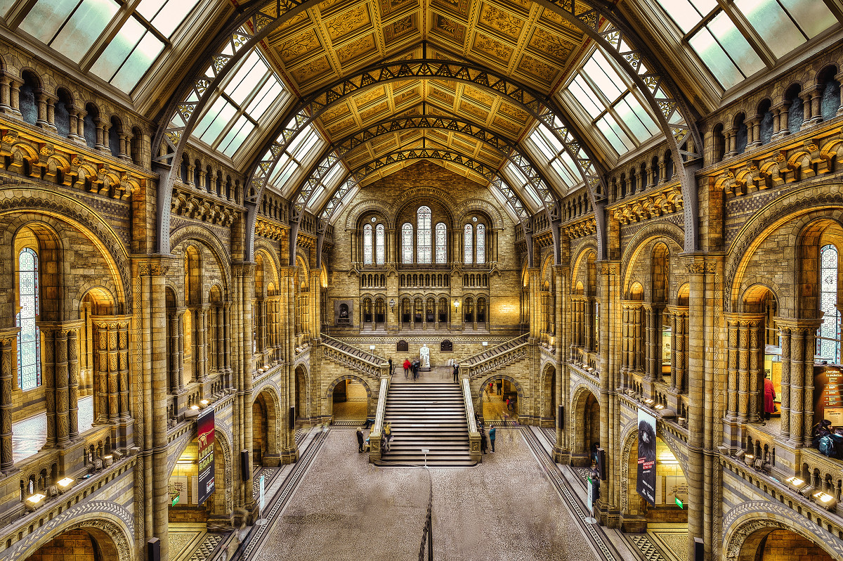 Inside The Natural History Museum, London. Credit Gene Krasko