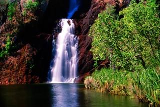 Wangi Falls Litchfield NT Australia 1995 (6)