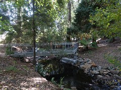 2017-03-19 Lilydale Falls 01 - Bridge over Second River to picnic tables