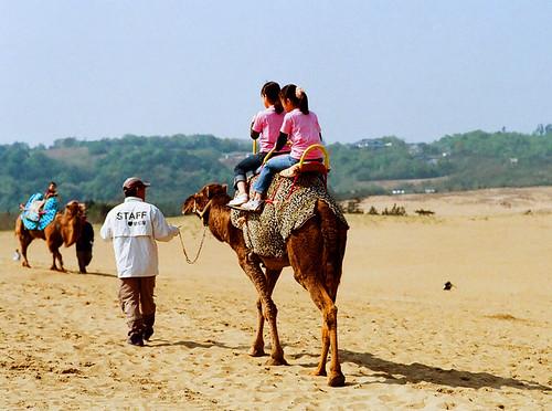 Tottori sand dunes_05