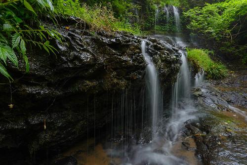 city river season waterfall long exposure angle wide rainy 日本 shimane jpan 滝 d600 新緑 梅雨 島根県 kodaki ohda 小滝 大田市 02景色