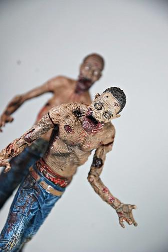 Michonne - Pet zombies