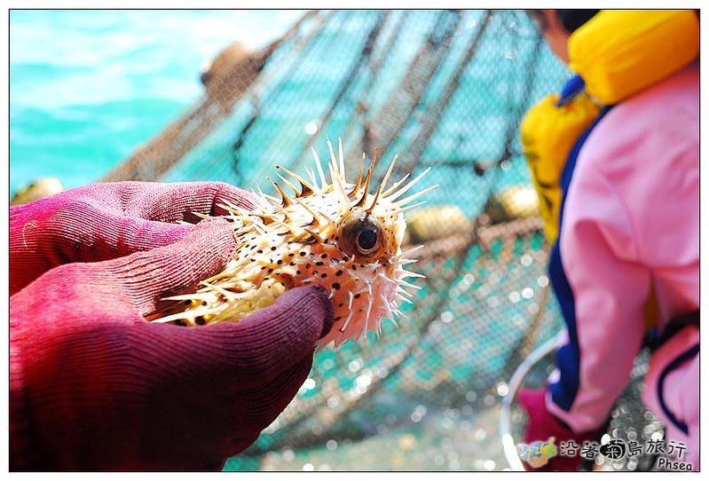 2013元貝休閒漁業_36