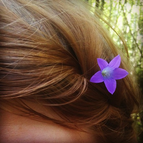 Flowers in my hair today