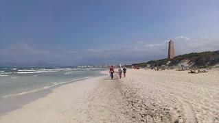 Image de Es Comú près de Port d'Alcúdia.