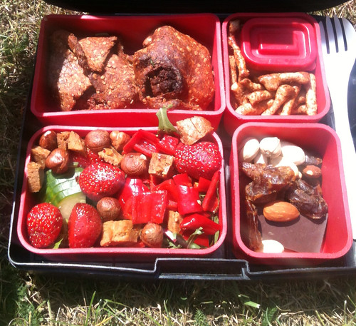Lunchbox on grass