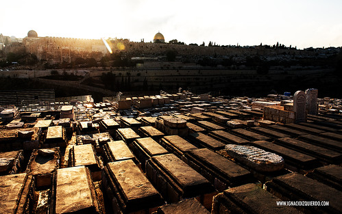 Jerusalem 31