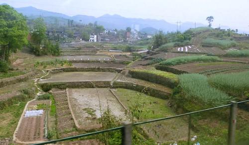 Hubei13-Wuhan-Chongqing-Chongqing (23)