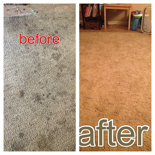 My feel sorry for me #carpetcleaning