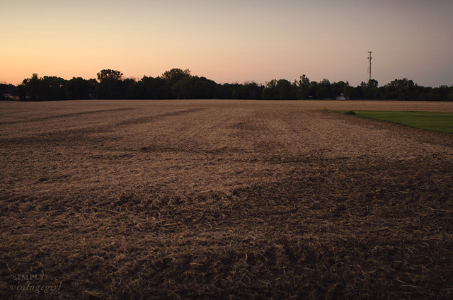 Indiana Landscape - Harvested Field