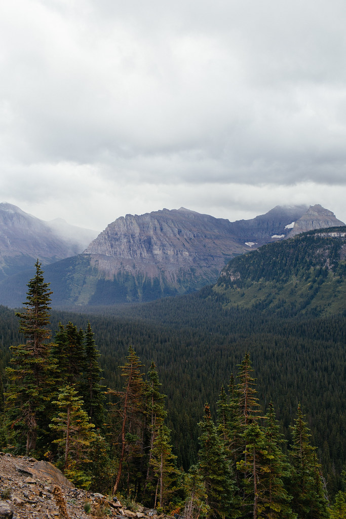 Montana2013_-13