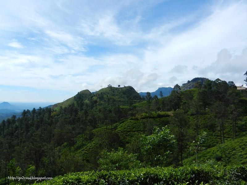 Окрестности Эллы на Шри Ланке