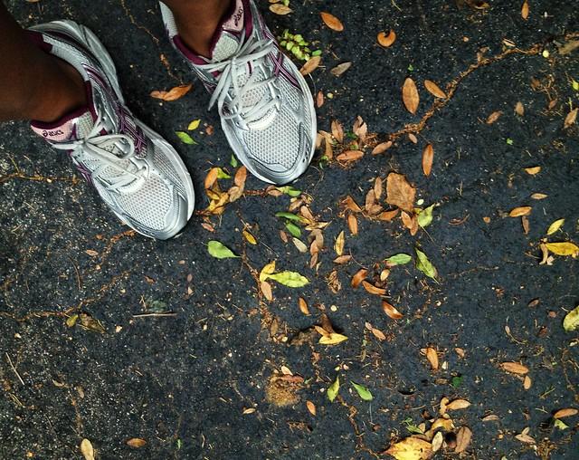Run B Run