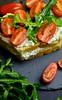 Tomato and arugula sandwich with eggplant-cream cheese I