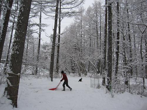 ①今年初の雪かき  2013.12.19 by Poran111