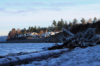 Edmonds shore 2