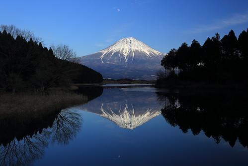 winter mountain lake reflection canon fuji 富士山 tanukiko 田貫湖 5dmarkiii ef2470mmf28liiusm