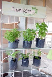 fresh-start-organic-farm.jpg