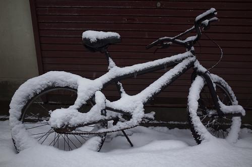 雪の楽天地