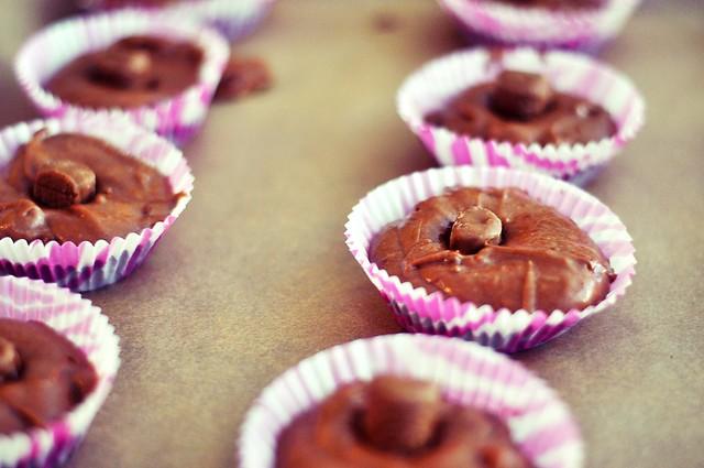 muffin12