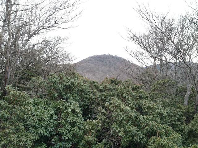 表山 山頂から望む裏山