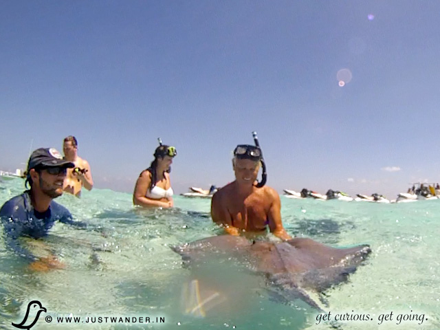 PIC: Grand Cayman Islands - Stingray City
