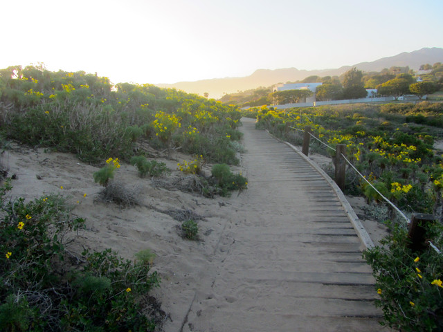 foot path at point dume