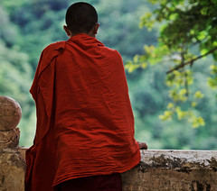 Young monk in monastry, Inle lake, Burma
