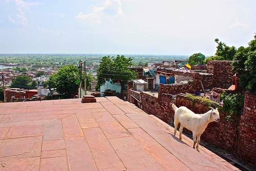 looking out from Buland Darwaza