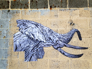 Bull Elephant Wheatpaste by TOVEN