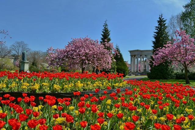 Alexandra Gardens