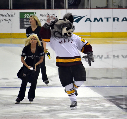 Chicago Wolves vs Rockford IceHogs 4-13-14