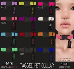 Tagged Pet Collar - Hard Alley Erotigacha