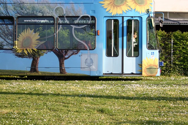 Street car with spring meadow II