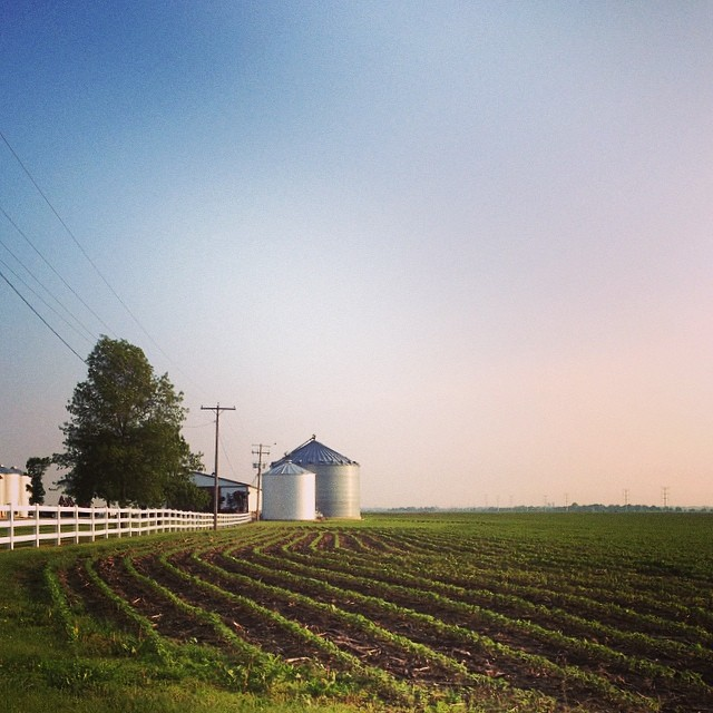 Farmland #shirleyruns #seenonmyrun #latergram