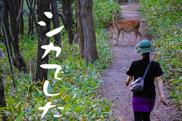 2014-07-21_02150_北海道登山旅行-Edit.jpg