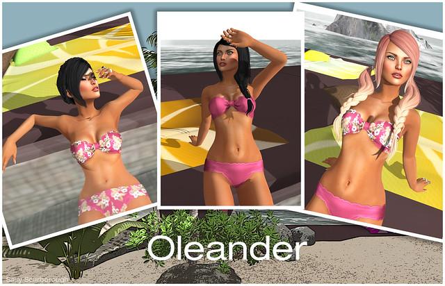 Hair Fair - Oleander