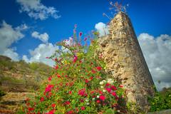 Ruins at Victory Villas