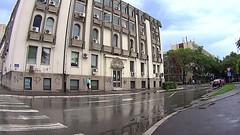 Novi Sad, Pavla Simića, Vojvođanskih brigada, Sutjeska by slucajni prolaznik